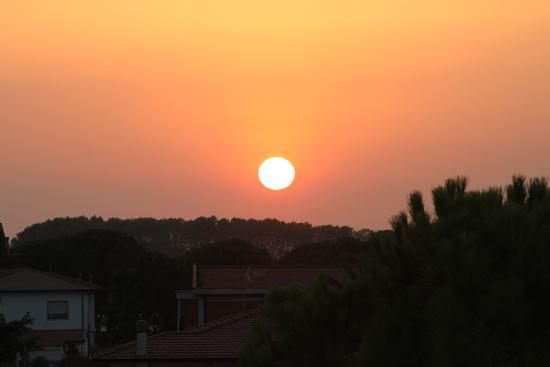 Il sole .... - Cascina (1103 clic)