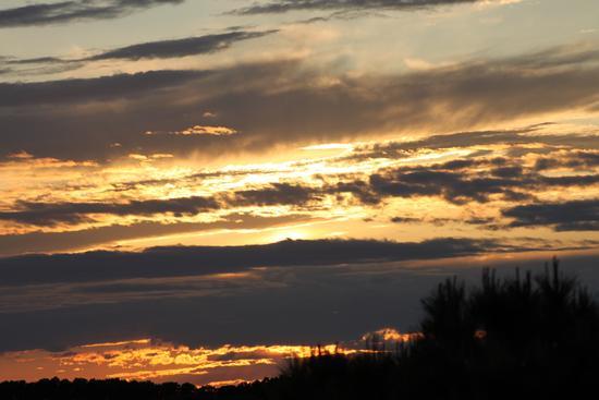 I colori del tramonto - Cascina (1609 clic)