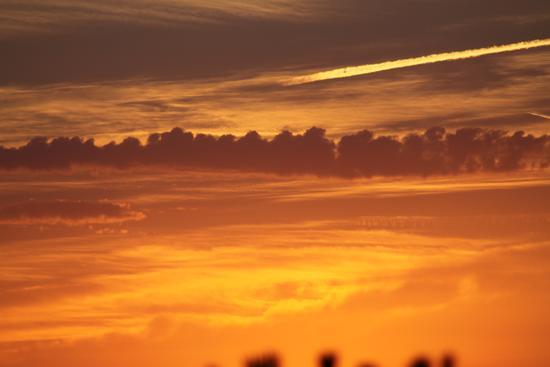 I colori del tramonto - Cascina (1126 clic)