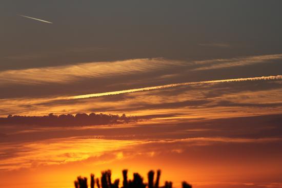 I colori del tramonto - Cascina (1125 clic)