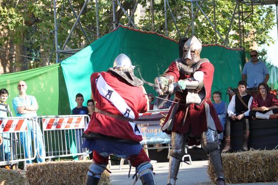 Combattimento Medievale. - Cascina (1014 clic)