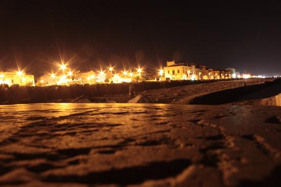 Marina di Pisa - MARINA DI PISA - inserita il 02-Sep-13
