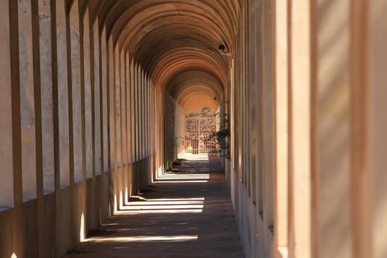Archi - Pisa (1745 clic)