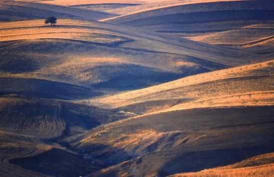 Aragona ( AG ) paesaggio Maccalube (3009 clic)