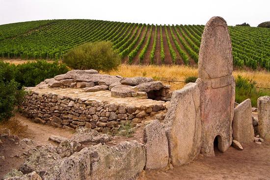 La Tomba dei Giganti Coddu Ecchju - Arzachena (4889 clic)