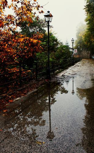 L'autunno - Collalto sabino (507 clic)