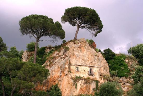 Casa in Montagna - Nicosia (1622 clic)