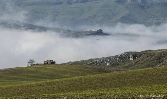 Persa nella nebbia - Mussomeli (638 clic)