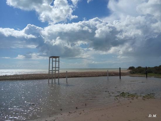Mare in inverno - Falconara (809 clic)