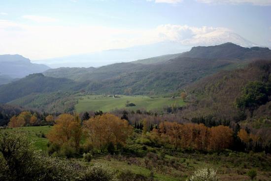 Monti Nebrodi (1591 clic)