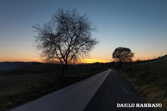 La strada verso casa - Mazzarino (802 clic)