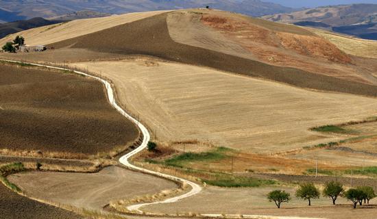 Il sentiero verso casa - Villarosa (1416 clic)