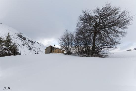 Neve nelle Madonie - Piano battaglia (660 clic)