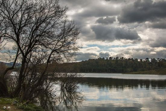 Una giornata al lago - Lago nicoletti (537 clic)
