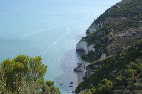 Puglia - Mattinata (1095 clic)