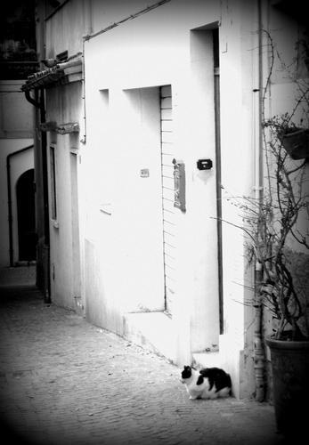il vicolo - Sirolo (1975 clic)