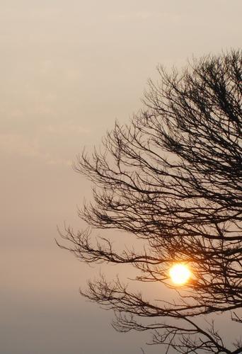 tramonto - Sirolo (1196 clic)