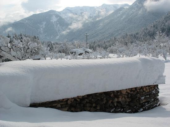 Neve a Forni Di Sopra (2440 clic)