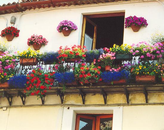 Balcone mediterraneo fiorito (842 clic)