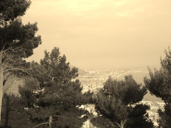 - Salerno (1151 clic)
