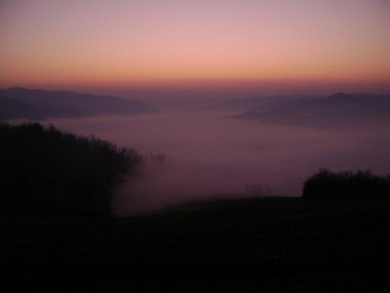 NEBBIA.... - Cereseto (967 clic)