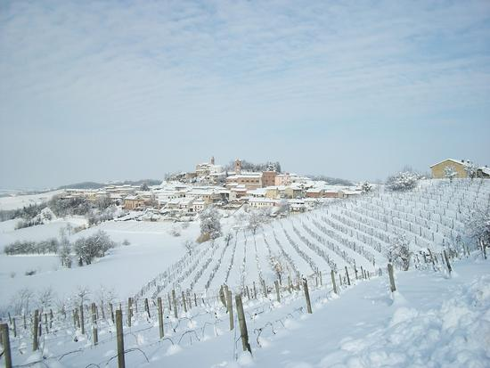 Sala Monferrato sotto la neve - Cereseto (1841 clic)