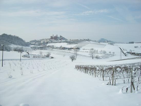 Cereseto Monferrato sotto la neve (990 clic)