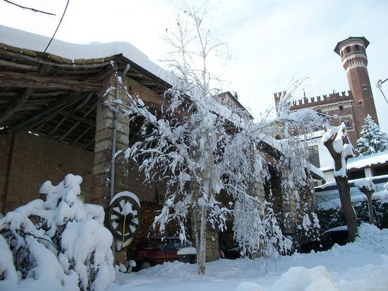 Cereseto Monferrato sotto la neve (834 clic)
