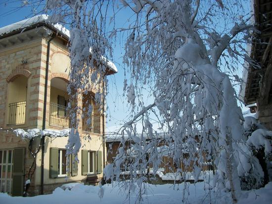 Cereseto Monferrato sotto la neve (627 clic)