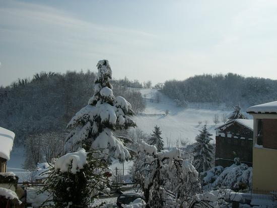 Cereseto Monferrato sotto la neve (621 clic)