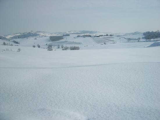 Cereseto Monferrato sotto la neve (718 clic)