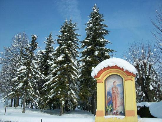 Cereseto Monferrato sotto la neve (864 clic)