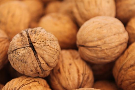 bunch of walnut - Ragusa (1658 clic)