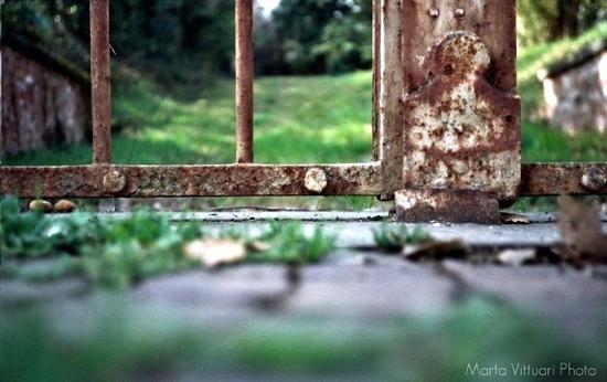 Il Giardino Segreto (820 clic)