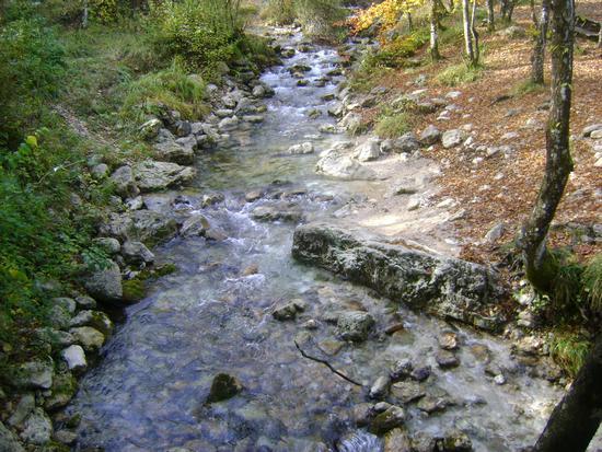 Riserva Naturale Zompo Lo schioppo - Morino (1133 clic)