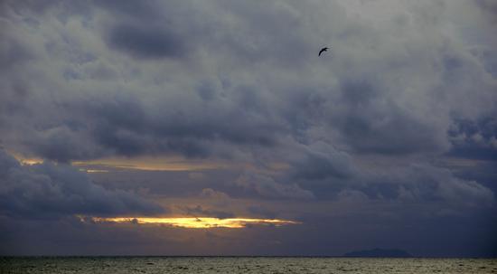 fine tempesta  - Livorno (1215 clic)
