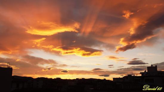 Il buon giorno si vede dal mattino  - Livorno (1281 clic)