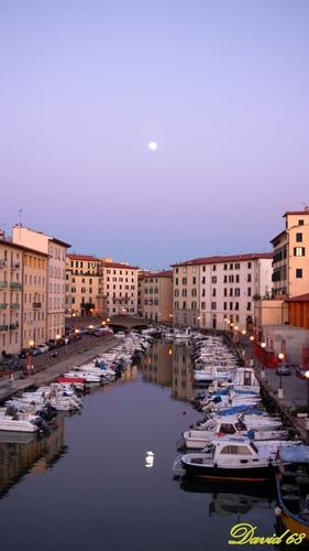 Venezia.......a Livorno  (1244 clic)