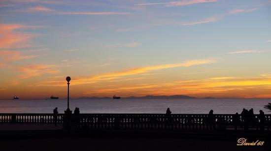 guardando l'isola ............. - Livorno (1094 clic)