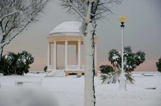 Livorno in bianco  (1175 clic)