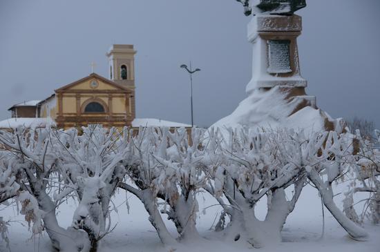 Livorno in bianco (1381 clic)