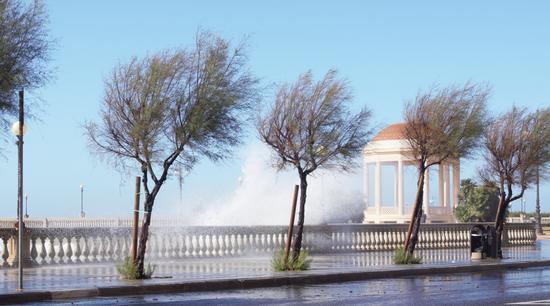 vento di libeccio - Livorno (1566 clic)