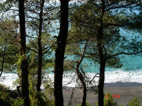 azzurro mare - Montemarcello (2977 clic)