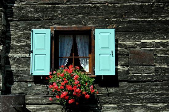 finestre di Livigno (1620 clic)