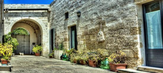 vecchia masseria - San cataldo (1393 clic)