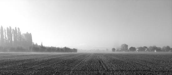 Terra e nebbia-02 - Castenaso (1105 clic)