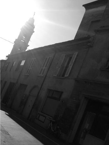 Profilo lucente - Bagnacavallo (1377 clic)