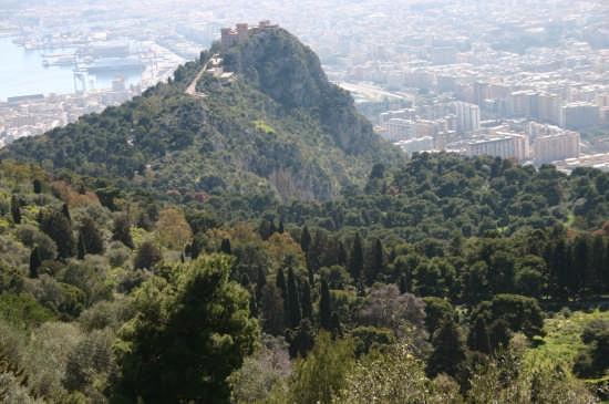 Uno pezzo di Palermo visto da M.te Pellegrino (3721 clic)