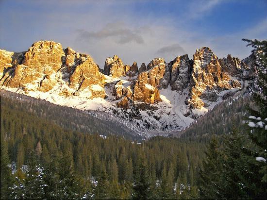 Le Pale di San Martino dalla foresta di Paneveggio (1986 clic)