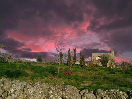 Murgia garden - Altamura (878 clic)